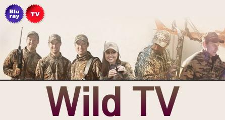 Wild TV
